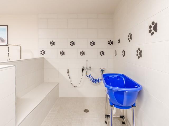 Image of Dog wash station for Modera Observatory Park
