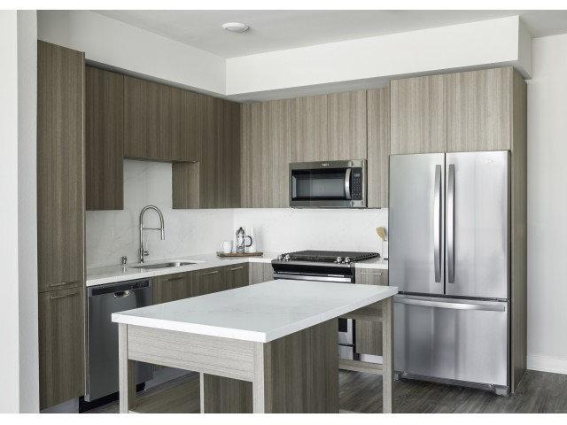 Sleek kitchens with stainless steel appliances