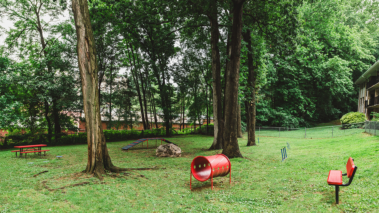 Outdoor dog park with red bench, table and agility equipment for dogs