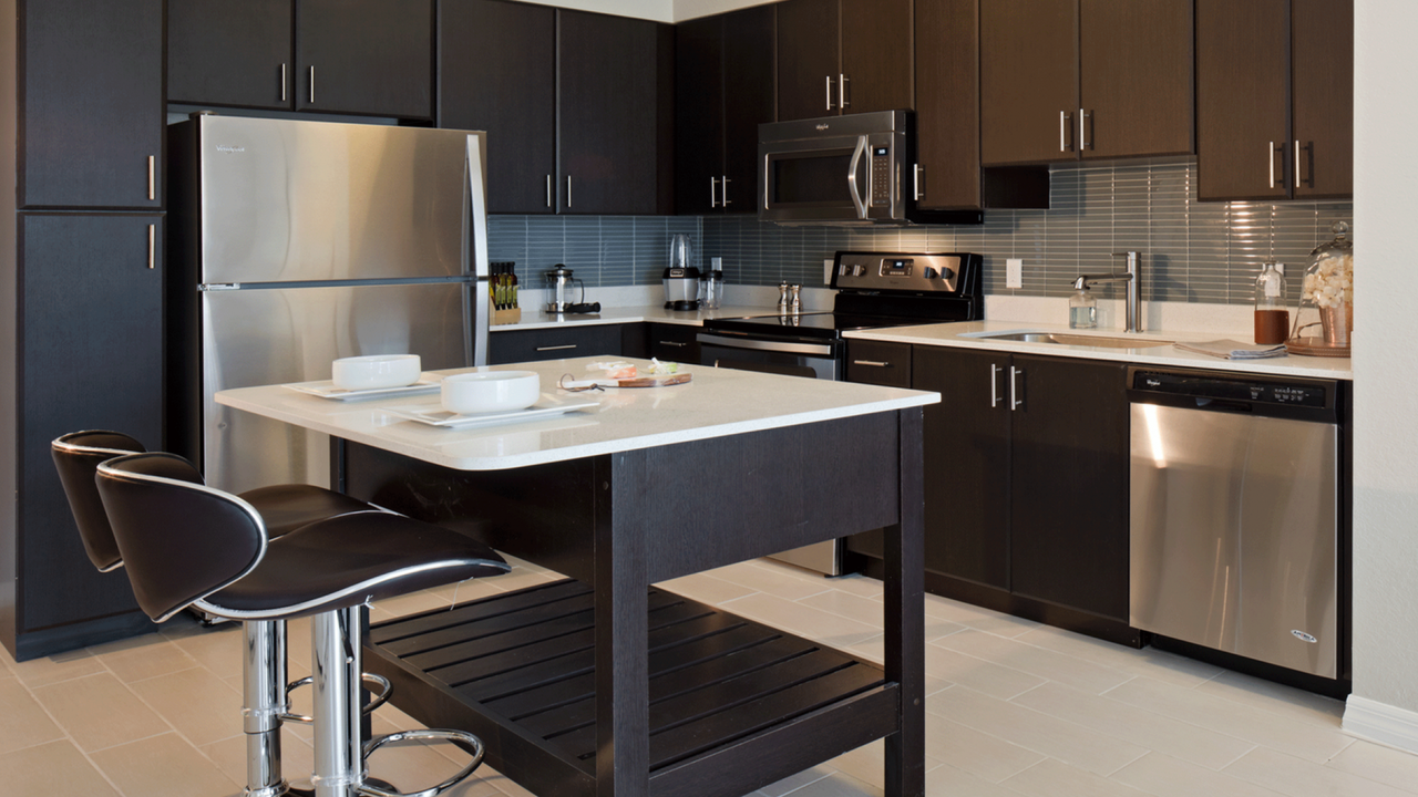 Stainless Steel Appliances and Quartz Counters
