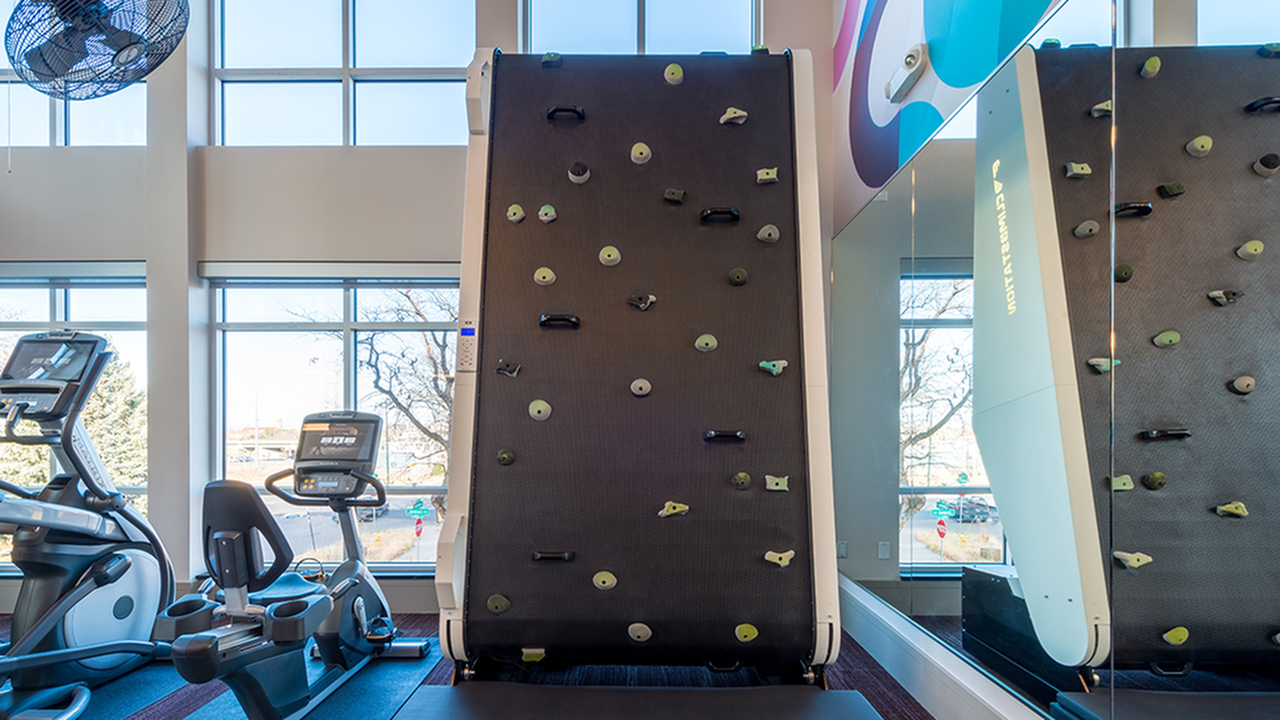 Rock Wall in Gym