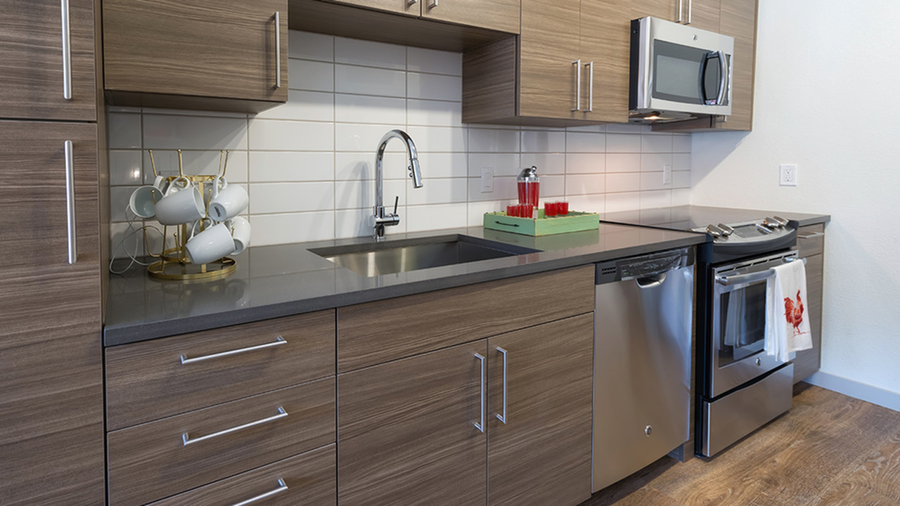 Contemporary Kitchens with Stainless Steel Appliances and Custom Cabinets