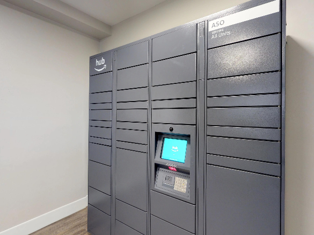 Amazon Hub Lockers