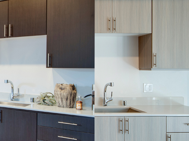 Dark tone modern cabinetry