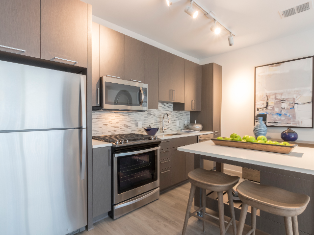 Contemporary kitchens featuring stainless steel appliances and gas cooktops