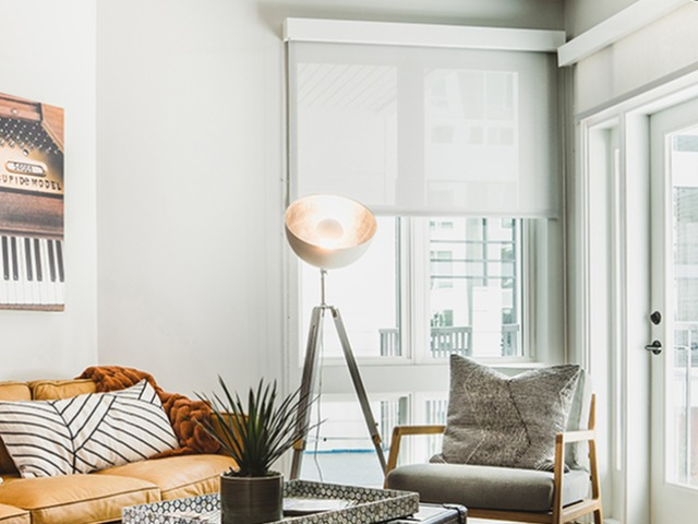 expansive windows and roller shades image