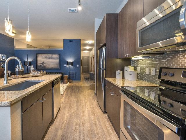 Image of gourmet kitchen at Modera Flats