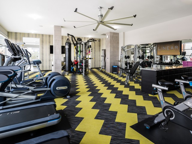 Image of Linear Gym + Fitness Training Center for Linear