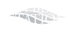Mulberry Station Logo | Luxury Apartments Harrisburg PA | Mulberry Station