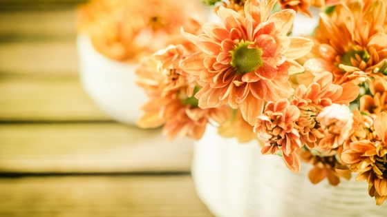 How to Get Your Apartment Ready for Fall