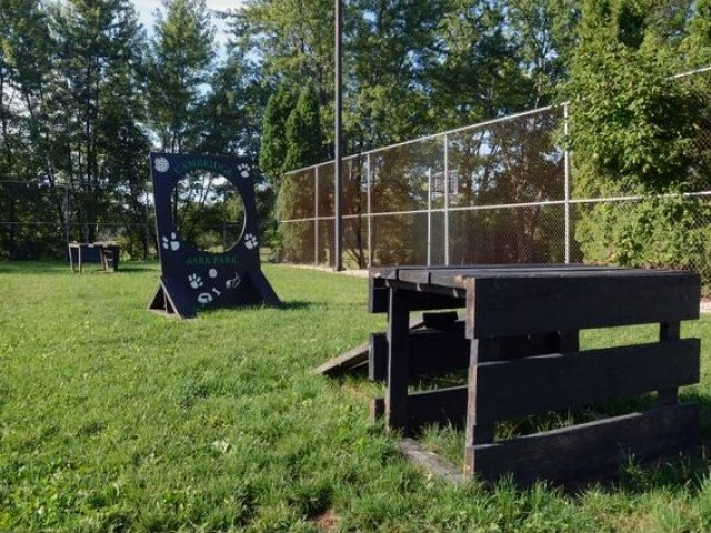 Bark park with dog exercise equipment