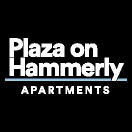 Plaza on Hammerly