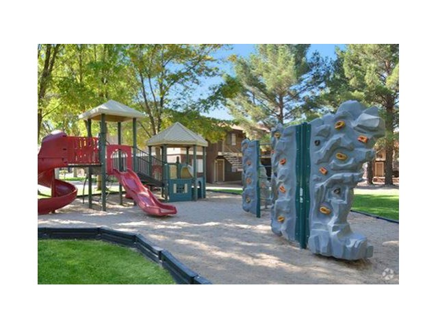 Image of Playground for Desert Tree