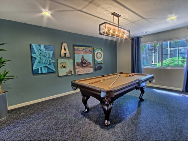 Image of Game Room for Antero