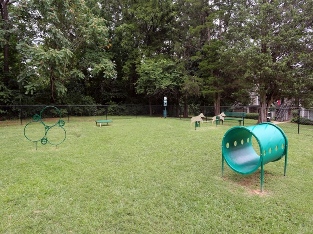Image of Bark Park for Park at Midtown