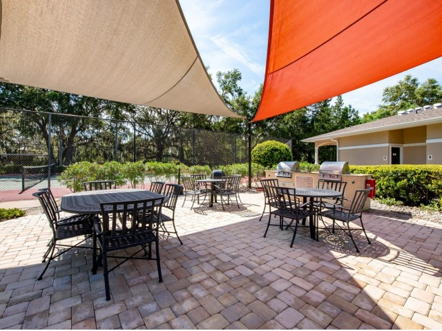 Image of Outdoor Gathering Area with Grills for Summer Cove Apartments