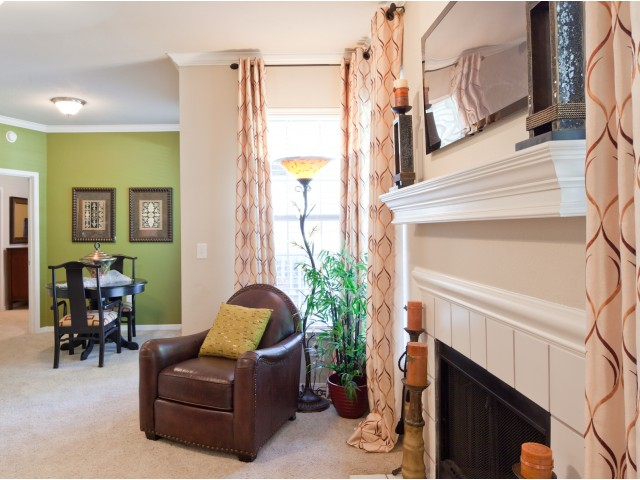 Image of *Fireplace for HOMES OF PRAIRIE SPRINGS