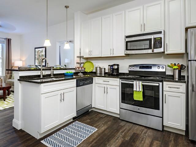 dishwashers in kitchens