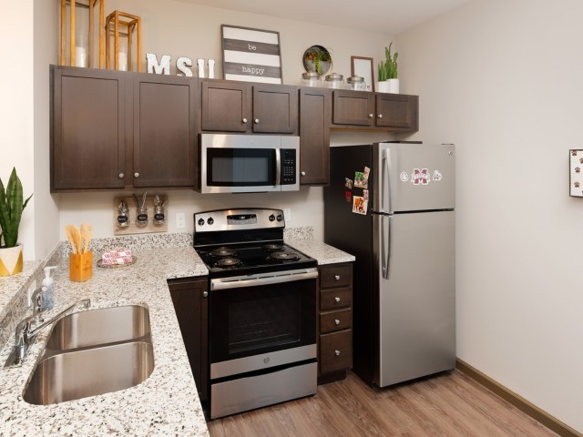 Stainless Steel appliances in kitchens