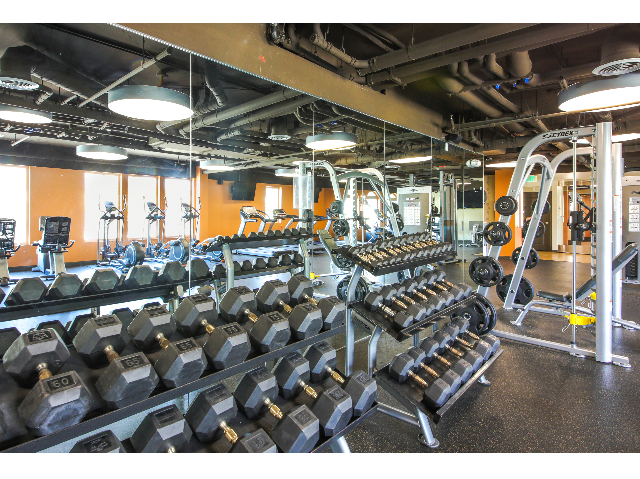 High-tech fitness center with strength equipment, cardio machines, free weights
