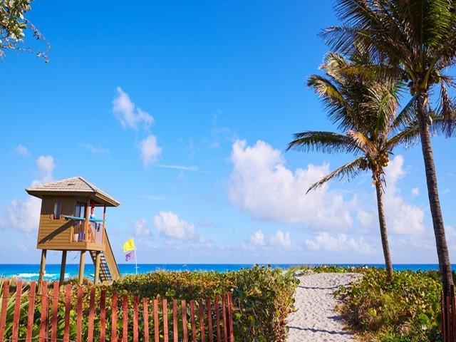 Delray Beach, beach, palm trees, blue skies