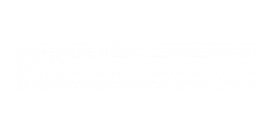 The Washingtons Apartmetns Logo