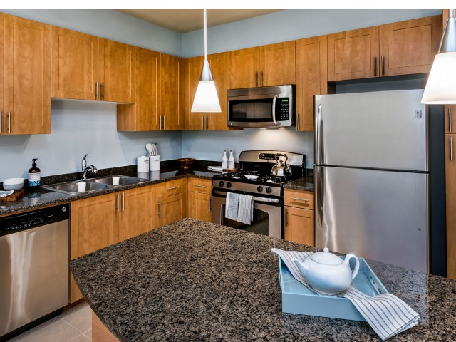 Image of Chefs kitchens – Sleek, stainless steel appliances and gas ranges for Ashton at Dulles Corner