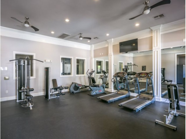 Image of Fitness Center User-friendly fitness center with full cardio and machine training that will get you the results you are looking for. for Avana Sugar Land