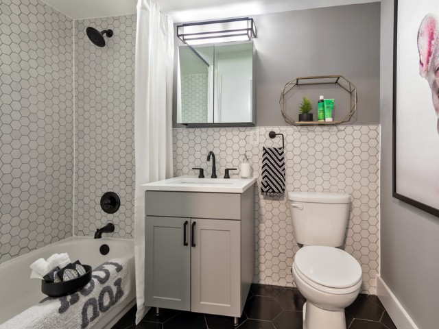 Image of Designer Bathrooms for Observer Park