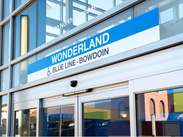 WONDERLAND BLUE LINE