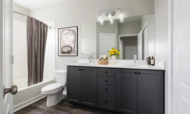 Luxe baths with double vanities