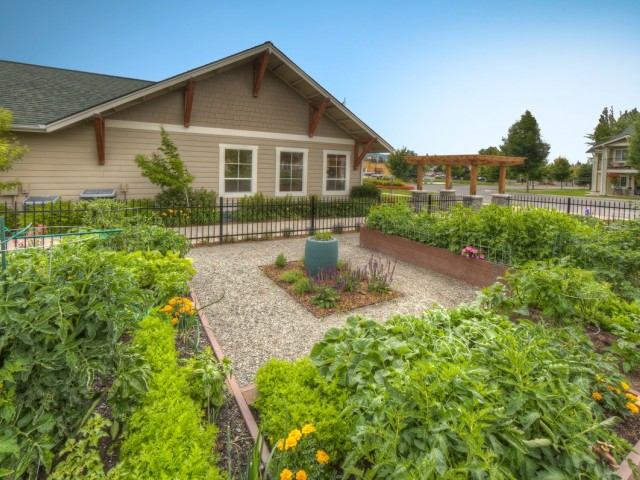 Image of Community Garden for Adirondack Lodge