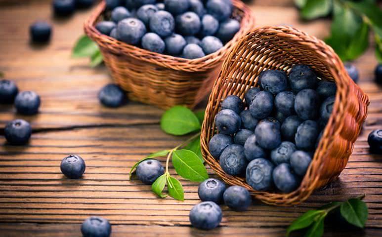 Foods that boost brain health for seniors
