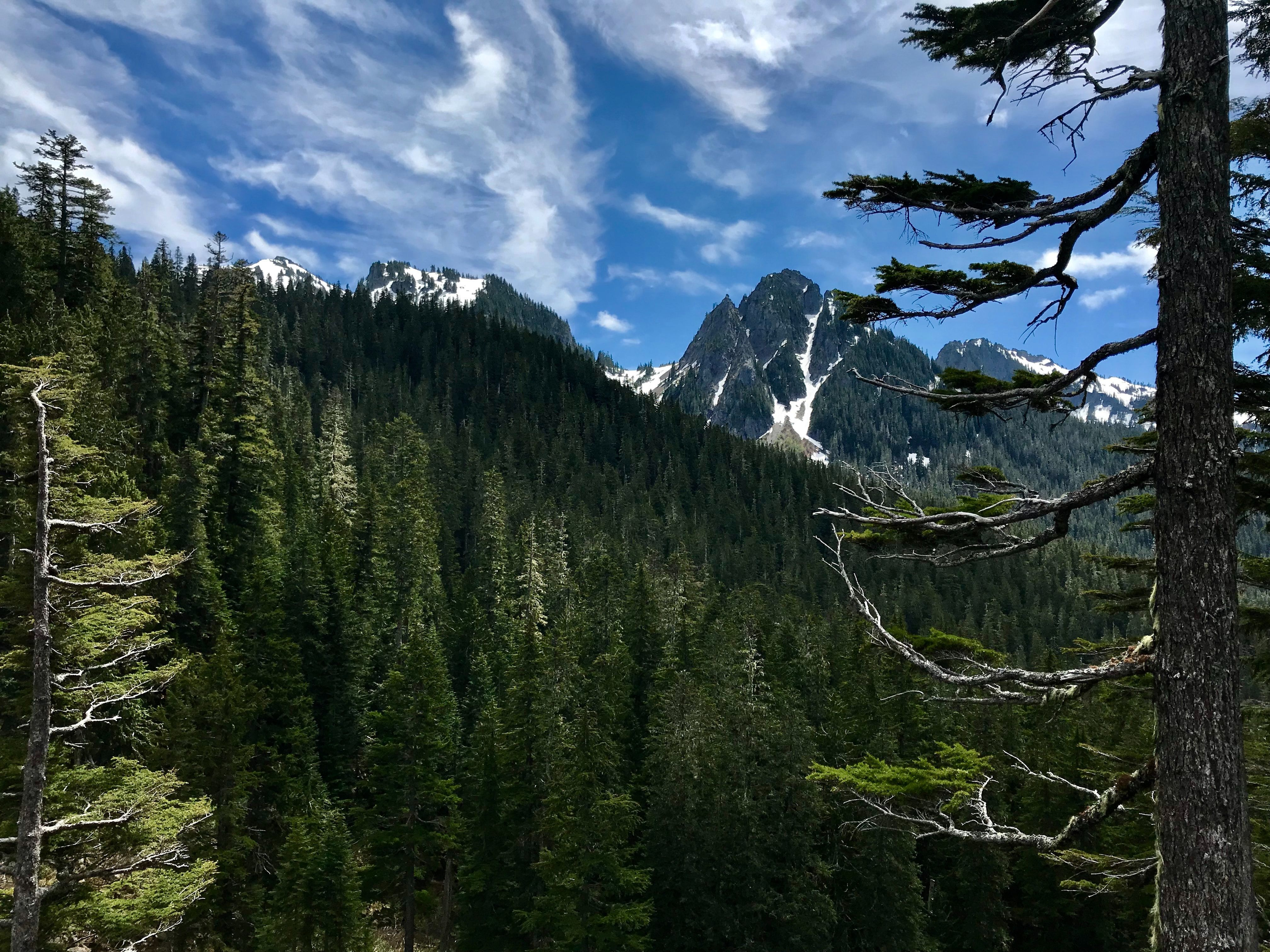 Top Scenic Day Trips from Seattle for Active Older Adults-image
