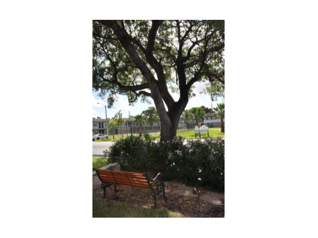 Image of Meditation Garden for Pompano Palms Apartments
