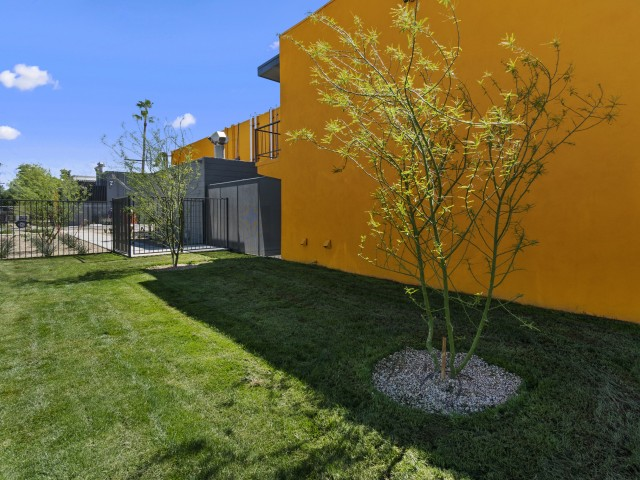 Image of Bark Park for Duo Apartments
