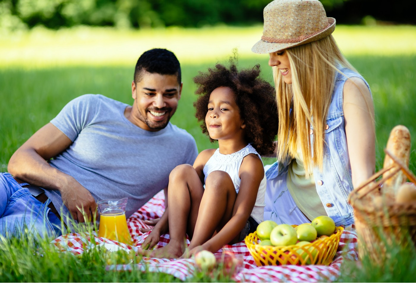 Family enjoying a picnic