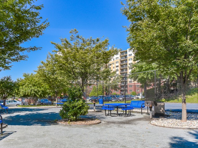 Image of Picnic/BBQ Areas for Hampshire Tower Apartments