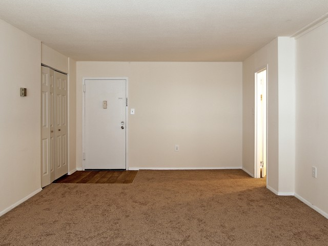 Image of Wall to Wall Carpet for Hampshire Tower Apartments