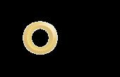 Orlo Logo White