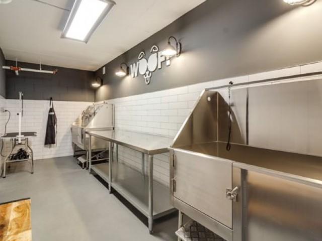 Image of Dog Wash Room for Pratt Park Apartments