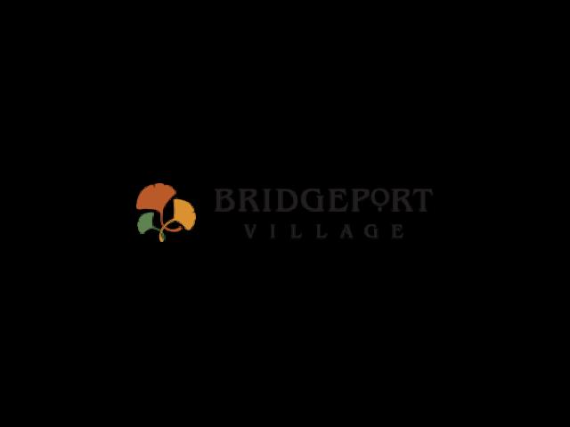 logo for Bridgeport Village shopping center