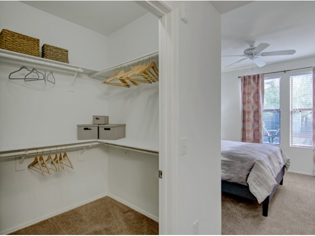Image of Large Walk-in Closets for Andante Apartments