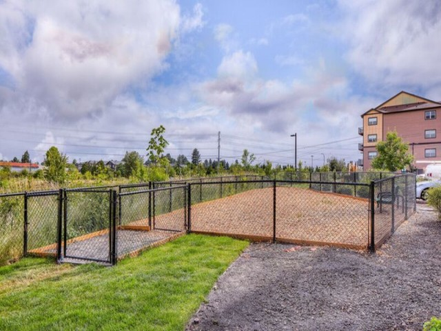 Image of Bark Park for Element 170 Apartments