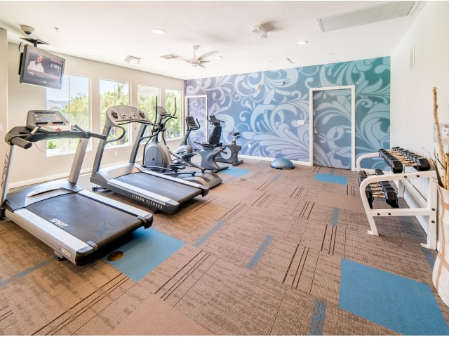 Image of New Fitness Center with Cardio; Free Weights, & More for Verona Apartments