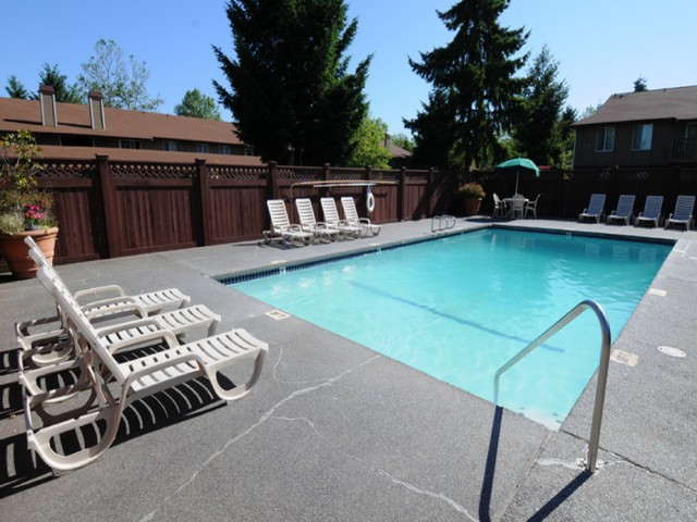Image of Pool for Terra Heights Apartments