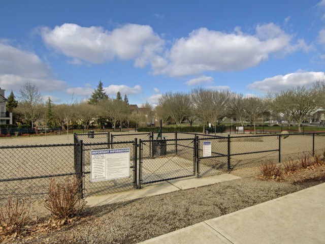 Image of Dog Park for Tessera Apartments