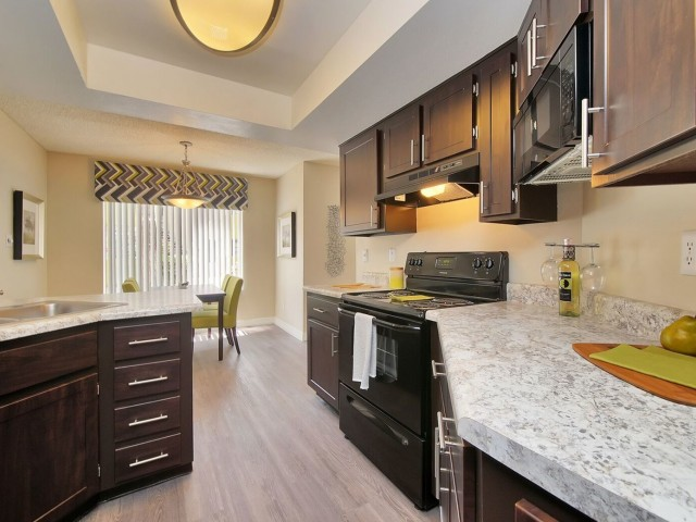 Image of Sleek and Modern Black Kitchen Appliances for Arches at Hidden Creek Apartments