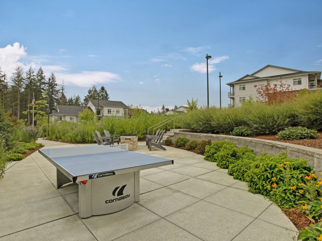 Image of Courtyard with Fire Pit and Ping Pong for The Marq on Martin Apartments