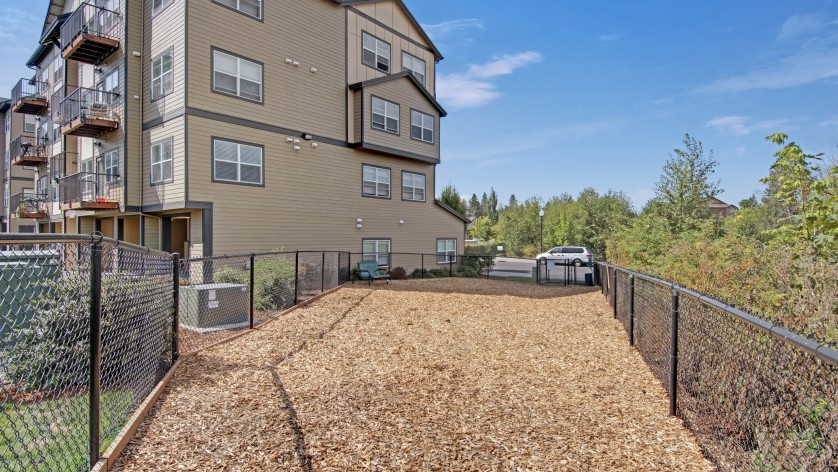 Community Bark Park | Luxury Apartments In Beaverton Oregon | Element 170